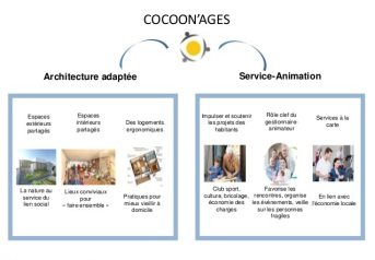 Coccon ages