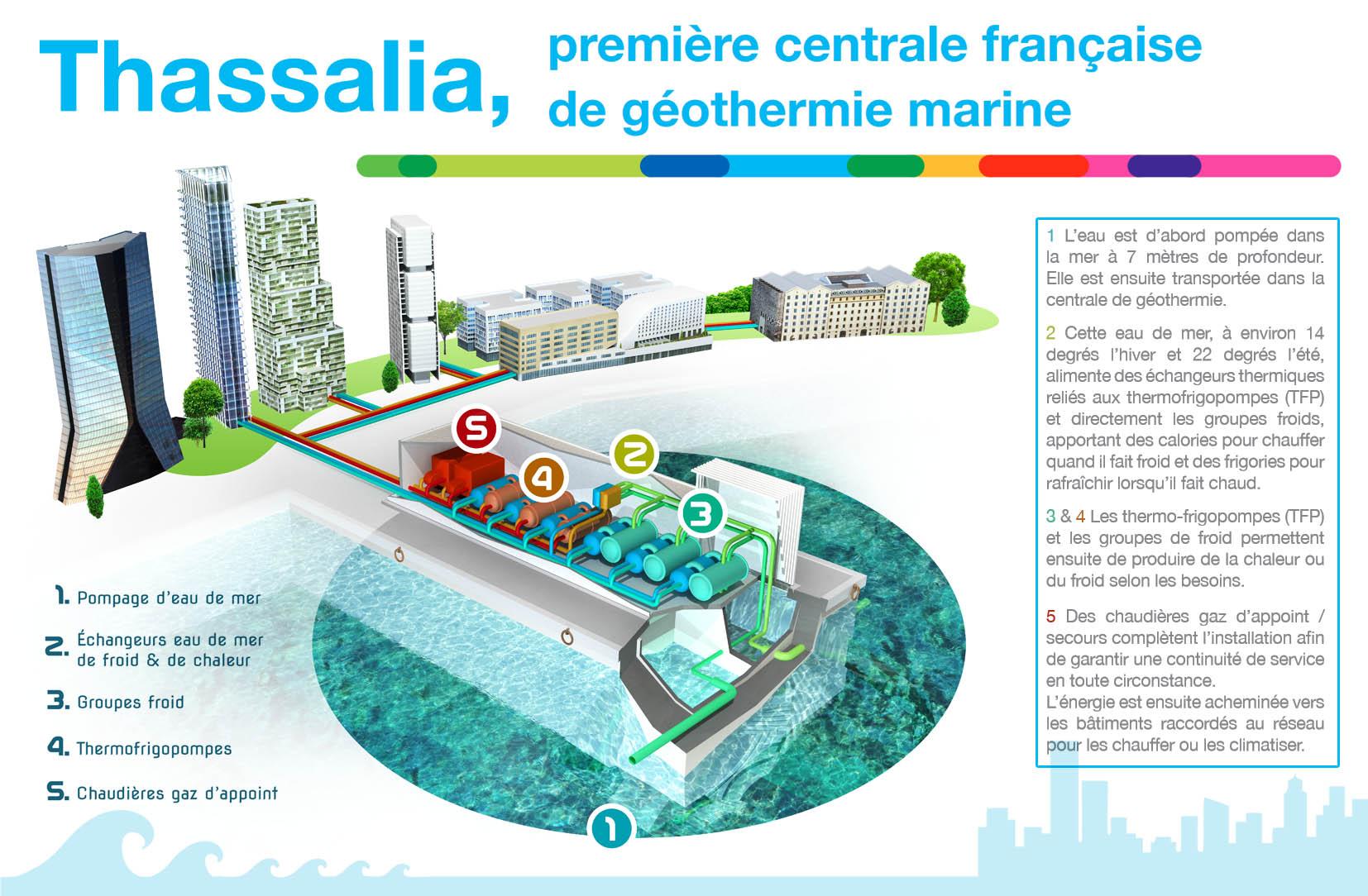 Thassalia